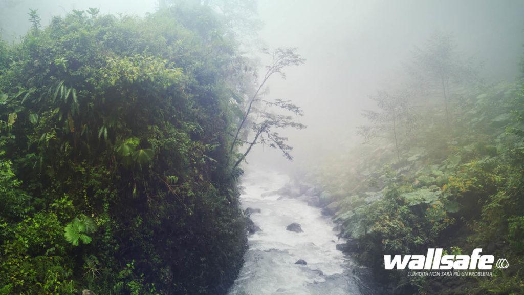 Ambiente umido