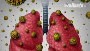 effetti della muffa apparato respiratorio
